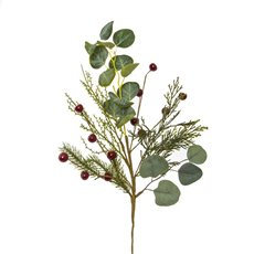 Christmas Flowers - Eucalyptus Pine Mix Christmas Spray Red Gum Nut (48cm)