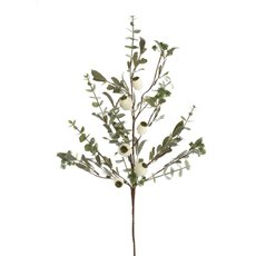 Christmas Flowers - Mistletoe Eucalyptus Spray White Gum Nut (74cm)