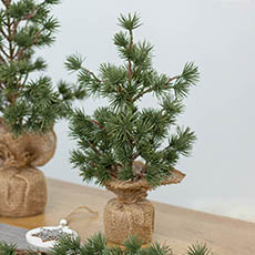 Tabletop Christmas Trees - Cedar Pine Burlap Wrapped Real Touch Green (32cmH)