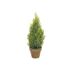 Tabletop Christmas Trees - Cypress Pine in Terracotta Pot Real Touch Green (30cmH)