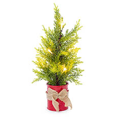 Tabletop Christmas Trees - Cypress Pine Potted Real Touch with LED Light Green (38cmH)