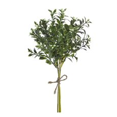Mistletoe Bunch 3PC Green (30cmH)