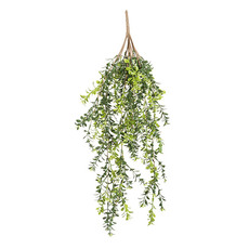 Mistletoe Hanging Bush Green (62cm)