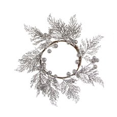 Fern Berry Wreath Silver (45cm)