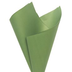 Regal Pearl Wrap Solid - Cello Regal Pro 65mic Moss (50x70cm) Pack 100