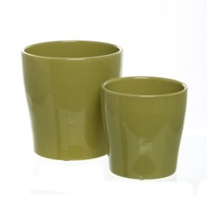 Ceramic Flora Cone Pot 16Dx16cmH Set of 2 Moss