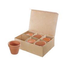 Terracotta Genoa Succulent Pot Pack of 6 (9x8cmH)