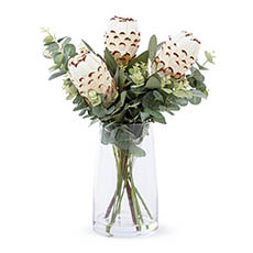 Artificial Flower Arrangements - Artificial Queen Protea & Eucalyptus Vase Arrangement 54cmH