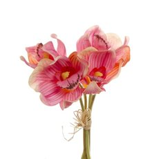 Cymbidium Orchid Bouquet Mix Light Pink (33cmH)