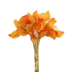 Cymbidium Orchid Bouquet Orange (33cmH)