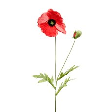 Other Flowers - Poppy Flower Stem with Black centre Red (60cmH)