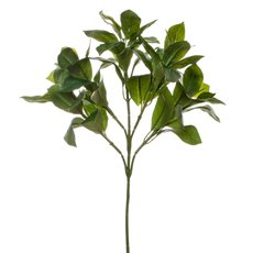 Artificial Leaves - Laurel Leaf Spray with 60 leaves Green (54cm.ST)