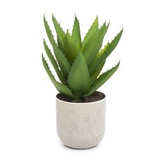 Artificial Plants - Potted Aloe Vera (29cm)