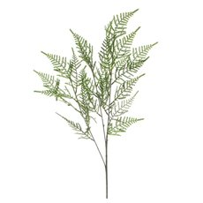 Artificial Leaves - Leaf Cypress Fern Spray Green (73cmH)