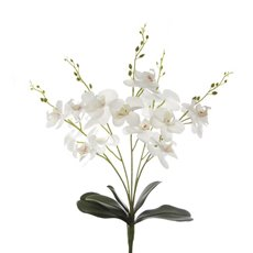Artificial Orchid Bouquets - Phalaenopsis Orchid Bunch Real Touch 5 Stems White (55cmH)
