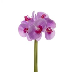 Artificial Orchid Bouquets - Phalaenopsis Orchid Bouquet Real Touch 6 Flowers Pink (29cm)