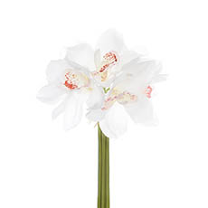 Cymbidium Orchid Bouquet Real Touch 6 Flowers White (25cmH)
