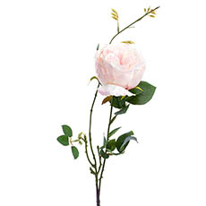 Artificial Roses - English Rose Spray Light Pink (76cmH)