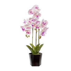 Artificial Orchids - Phalaenopsis Orchid Potted Real Touch 17Flowers LtPink(75cm)