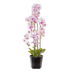 Artificial Orchids - Phalaenopsis Orchid Potted Real Touch 33Flowers LtPink(90cm)