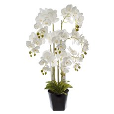Artificial Orchids - Phalaenopsis Orchid Potted Real Touch 54 Flowers White(95cm)