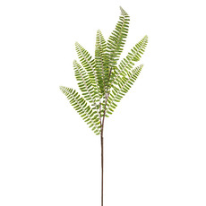 Artificial Leaves - Sword Fern Spray (71cm)