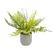Artificial Plants - Potted Fern Green (36cm)