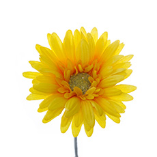 Gerbera Aztec Bright Yellow (54cm)