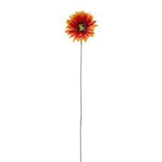 Gerbera Aztec Orange Yellow Tips (54cm)