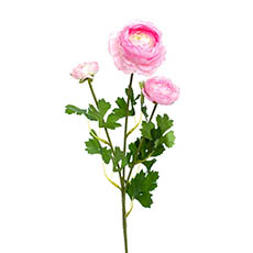 Artificial Ranunculus - Helena Ranunculus Spray Light Pink (61cmH)