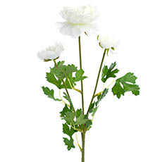 Artificial Ranunculus - Helena Ranunculus Spray White (61cmH)