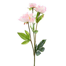 Artificial Peonies - Vanessa Princess Peony Spray Light Pink (67cmH)