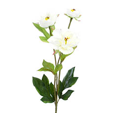 Artificial Peonies - Vanessa Princess Peony Spray White (67cmH)