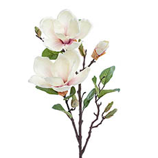 Artificial Magnolias - Magnolia Open Flower Spray with Bud Light Pink (71cmH)