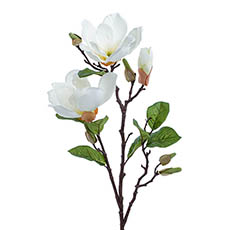 Artificial Magnolias - Magnolia Open Flower Spray with Bud White (71cmH)