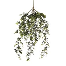 Artificial Leaves - Eucalyptus Leaf Hanging Plants Bush Green (62cm)