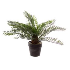 Artificial Plants - Artificial Cycad Palm Mini Cement Pot Green (30cmH)