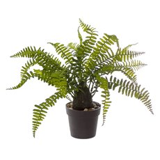 Artificial Plants - Artificial Boston Fern Plant Real Touch Potted Green (36cmH)