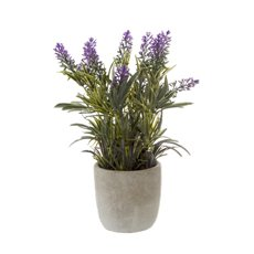 Artificial Plants - Artificial Petite Lavender Plant x11 with Pot Purple (29cmH)