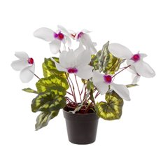 Artificial Plants - Artificial Petite Cyclamen Plant Potted White (30cmH)