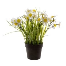 Artificial Plants - Artificial Petite Jonquil Plant Potted White (27cmH)