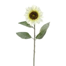 Other Flowers - Sunflower Stem Cream (72cmH)