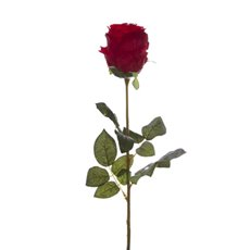 Rose Bud Stem Sarah Dark Red (85cmH)