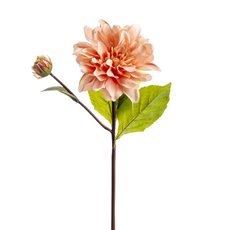 Other Flowers - Dahlia Stem Pink (53cmH)