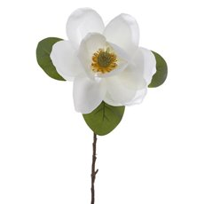 Magnolia Flower Stem White (52cmH)