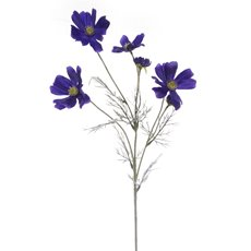 Other Flowers - Cosmos Spray Cobalt Blue (62cmH)