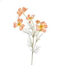 Other Artificial Flowers - Cosmos Spray Coral (62cmH)