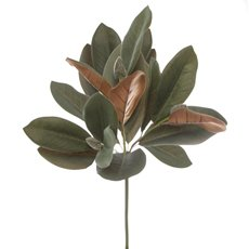 Artificial Leaves - Magnolia Leaf Bunch Green (50cmH)