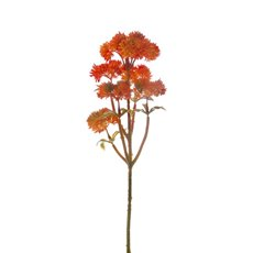 Other Flowers - Mini Sedum Spray (Billy Button) Orange (34cm)