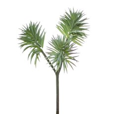Artificial Succulents - Artificial Succulent Pine Spray x3 Grey (35cmH)